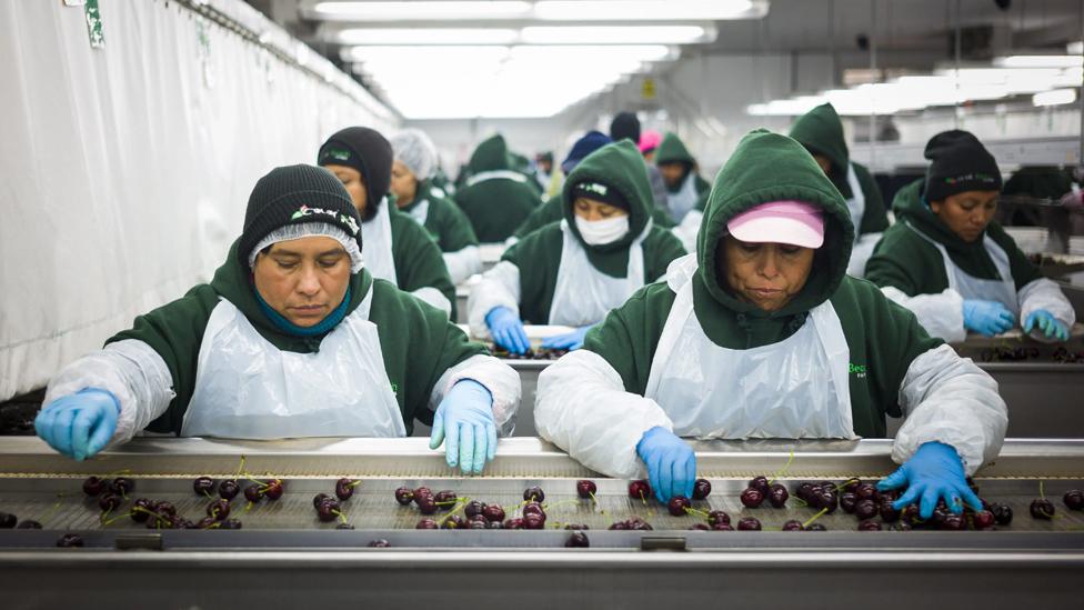 travailleurs triant dans une installation